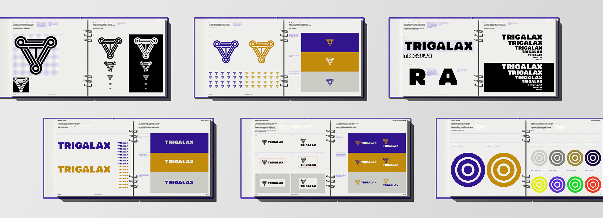 04_Trigalax-Space-Branding-guidelines-02