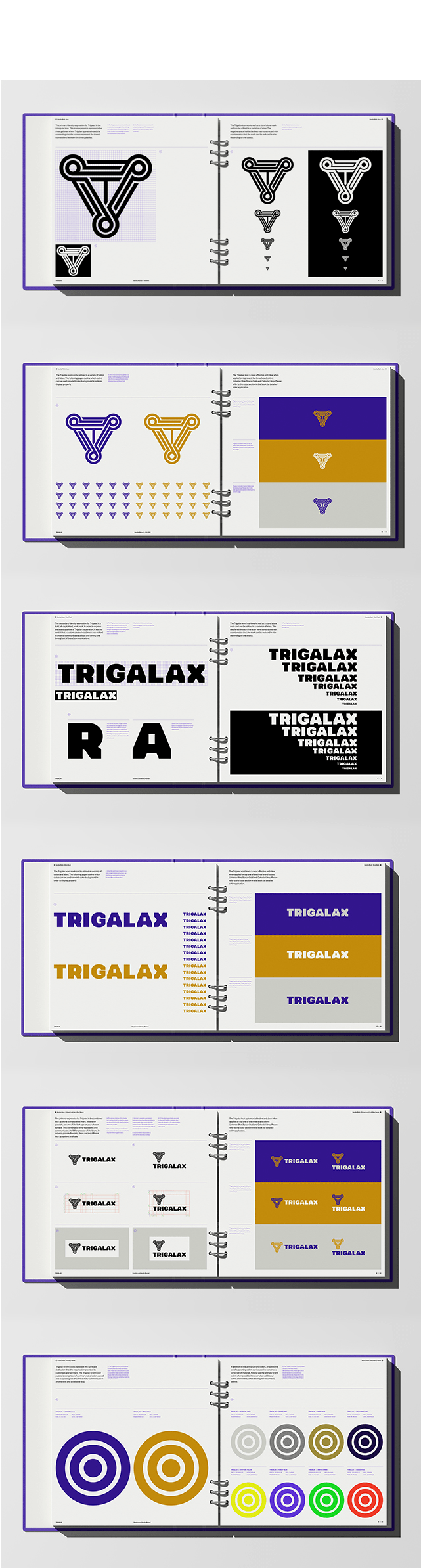04_Trigalax-Space-Branding-guidelines-02-M