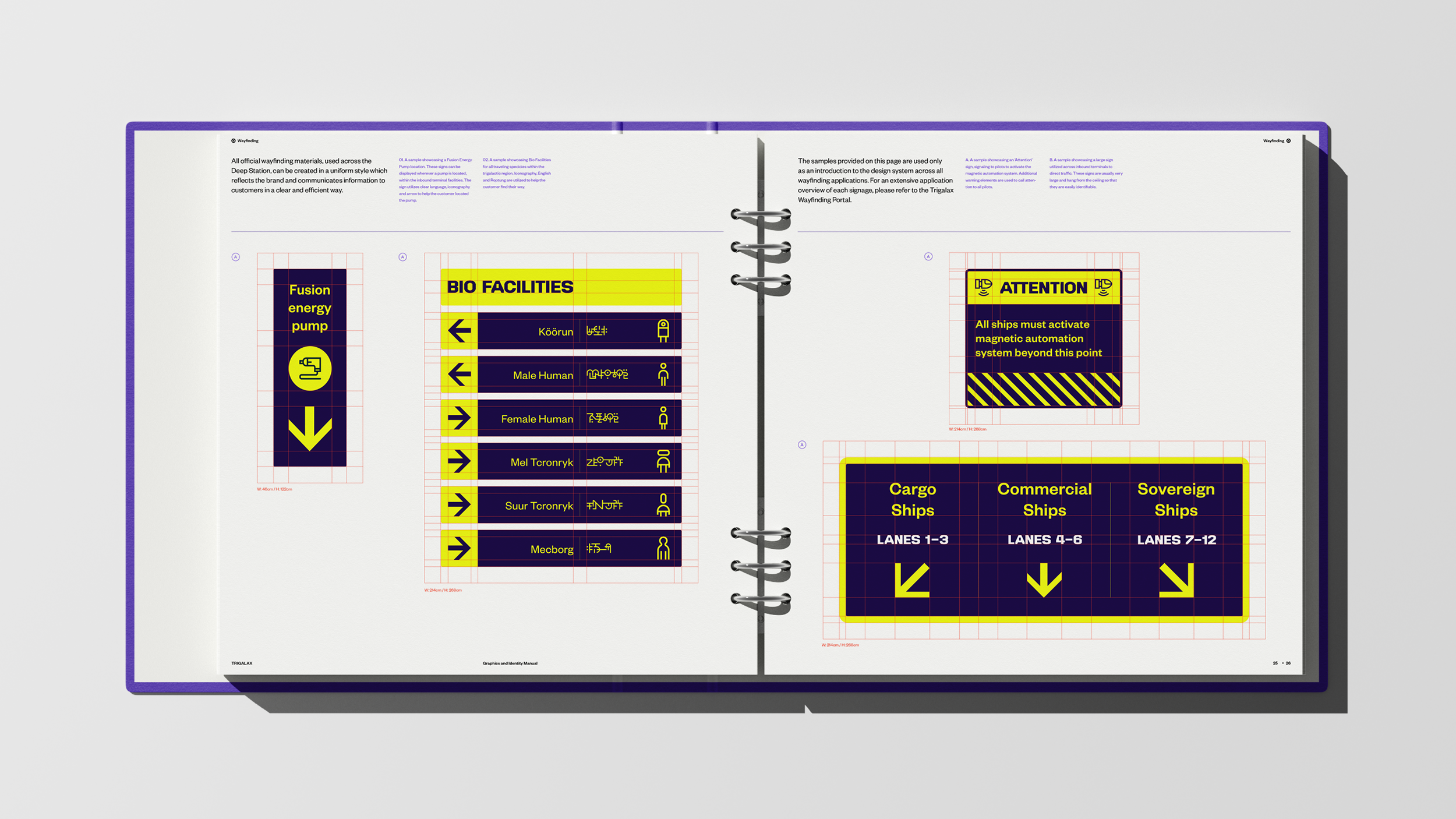 05_Trigalax-Space-Branding-guidelines-03-1