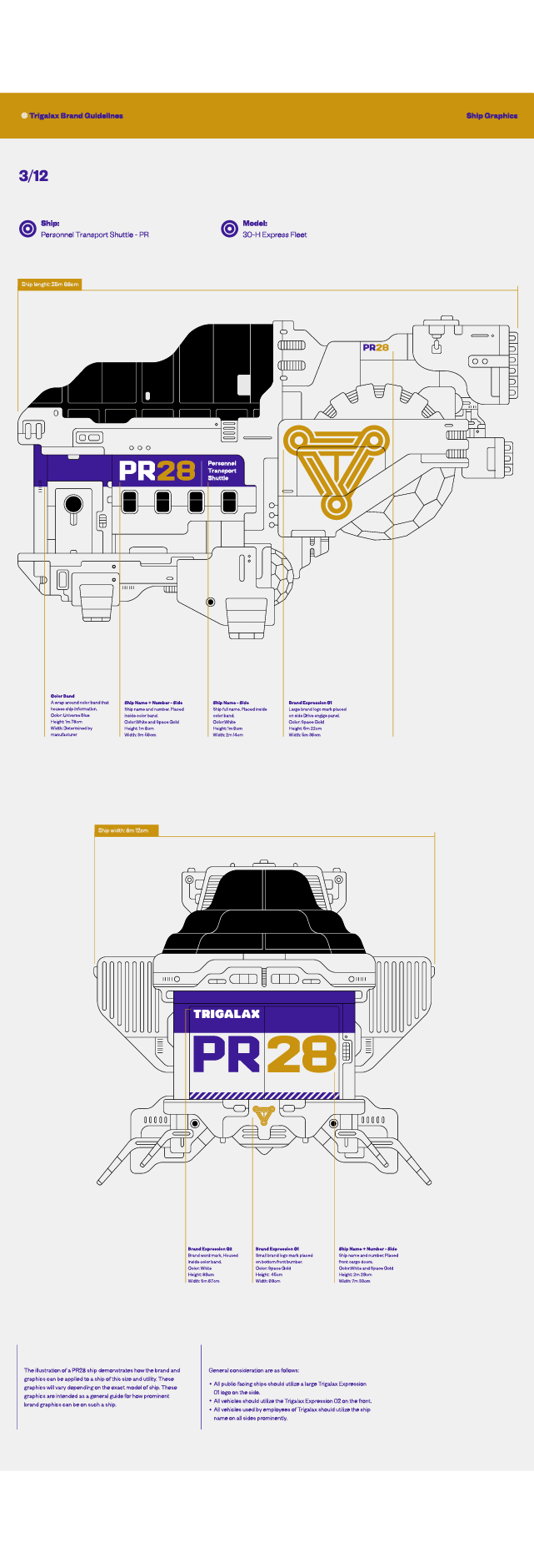 10_Trigalax-Space-Branding-Ship-Graphics-M